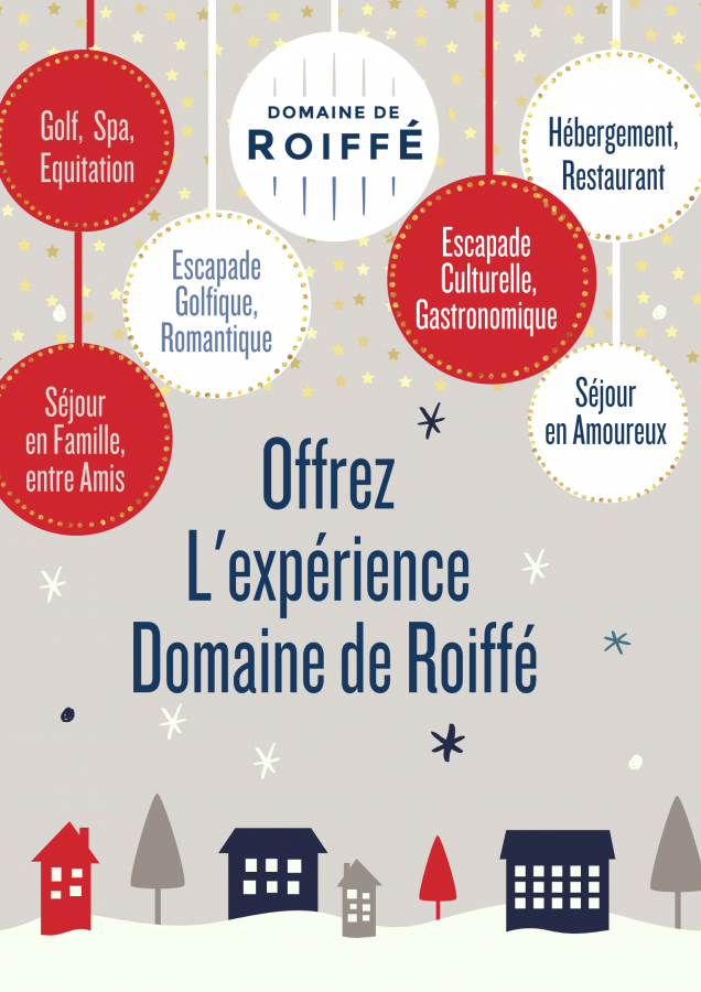 Offer the Domaine de Roiffé experience